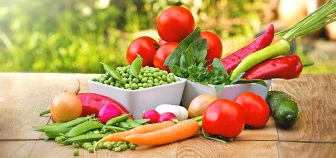 Nutrição Alimentação
